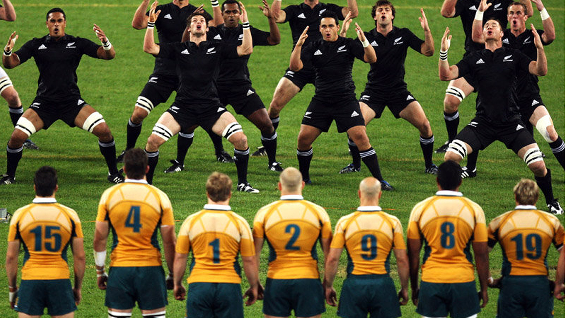 All blacks perform their pre match ritual - australian rugby player launches past the all blacks - bledisloe Cup tickets