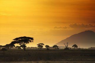 africa-swaziland-min
